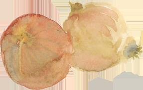 x.onions