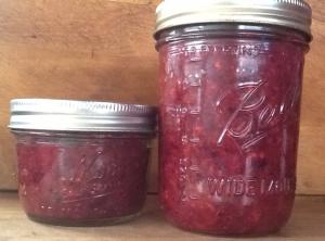 Fermented Cranberry Relish