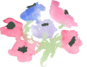 x-maggies-flowers